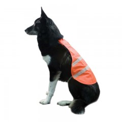 blaze orange dog vest, orange safety vest for dogs, dog safety vest, dog safety vest for hunting, orange hunting safety dog vest