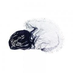 Fishing gear equipment smelt net nylon