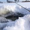 Girl, 3, can legally fish, Saskatchewan judge rules