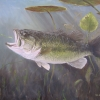 Bass Fishing Tip: Go Slow for Spring Largemouth